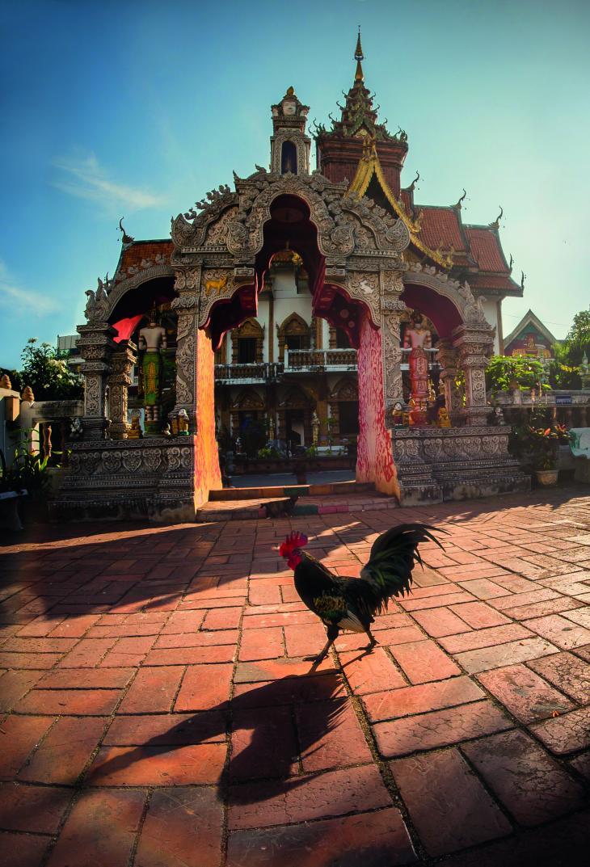 Тайланд, гр. Чианг Май